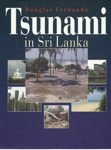 Tsunami in Sri Lanka: Die Trümmer schreien nach einem neuen Anfang