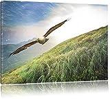 Majestic Bald Eagle Bunstift effetto, formato: 120x80 su tela, XXL enormi immagini completamente Pagina con la barella, stampa d'arte sul murale con telaio, più economico di pittura o un dipinto a olio, non un manifesto o un banner,