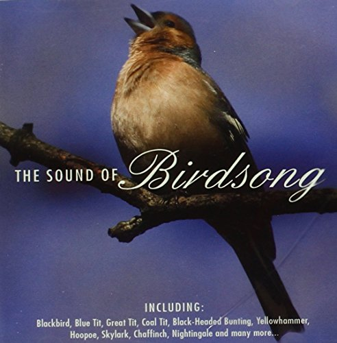 Sound-of-Birdsong