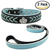 Newtensina Mode Hundehalsband und Leine Set Nylon Riemen gewebter Kragen Diamante Welpen Halsband mit Leine für mittlere Hunde große Hunde