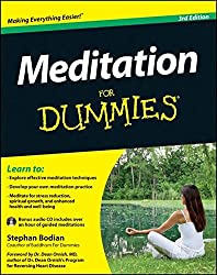 Meditation For Dummies: w/Audio CD