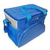 D-jeesian 20L Tragbar Faltbare lsolierte Kühltasche Lunch Box Picknick Organizer Box mit starken Reise Reißverschluss für Picknick Camping Strand BBQ