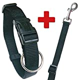 Schecker Black Label Halsband + Leine, das preiswerte Set! 090655 1696 - Halsband - verstellbar - 35-55 cm, 20 mm + Leine 120-180 cm / 15 mm
