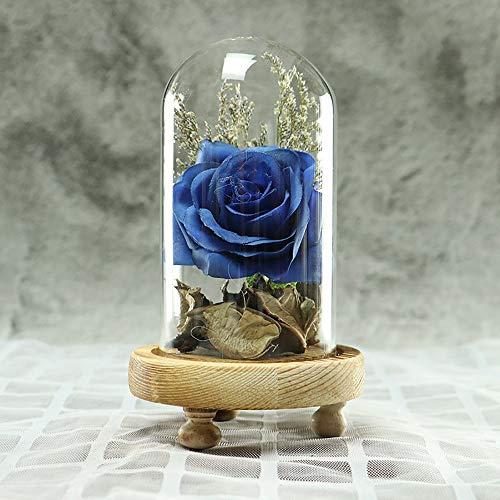 Rosennie Die Schöne und das Biest Rosen-Set Geschenk um Valentinstag Künstliche Gefälschte Rosen Blume Das Tier Blume In Glas Konservierte Blume Perfekt für Romantic Festival Geschenk (Blau)