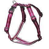 Feltmann Mopsgeschirr Hundegeschirr Soft Nylon, pflaume Streifen, 5-9 kg, 15 mm