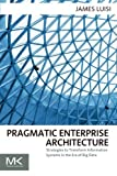 Pragmatic Enterprise Architecture: Strategies to Transform Information Systems in the Era of Big Data by James Luisi (2014-04-14)