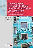 Das pädagogisch-therapeutische Milieu in der Arbeit mit Kindern und Jugendlichen: Trauma- und Beziehungsarbeit in stationären Einrichtungen (Fachwissen)