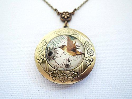 Messing antik Kolibri Halskette mit Medaillon, Vogel Taschenuhr, Dandelion Medaillon Halskette,