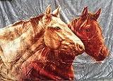 Kuscheldecke Tagesdecke Decke Motiv Pferd / Pferde NEU 160x200cm