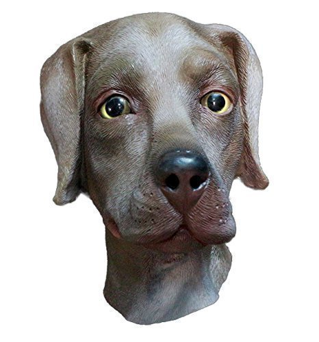 The Rubber Plantation TM 619219291385 Schokolade Labrador Full Head Latex Hund Maske Fancy Kleid Halloween Tier Hunde Kostüm Zubehör, Unisex, braun, one size
