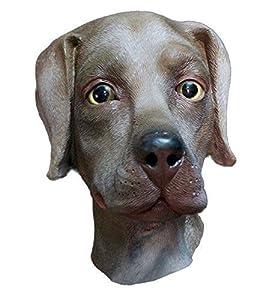 The Rubber Plantation TM 619219291385 Chocolate Labrador Mascarilla de látex para perro, disfraz de Halloween animal Canine accesorio unisex adulto, marrón, talla única