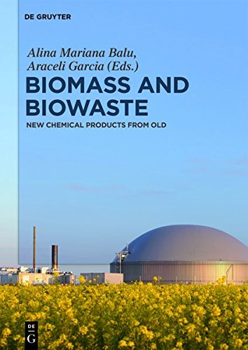 Biomass and Biowaste: New Chemical Products from Old