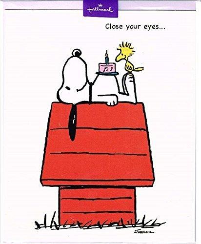 peanuts-snoopy-birthday-card-by-hallmark
