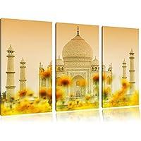 Taj Mahal immagine Estate 3 pezzi picture tela 120x80 su tela in, XXL enormi immagini completamente Pagina con la barella, stampe d
