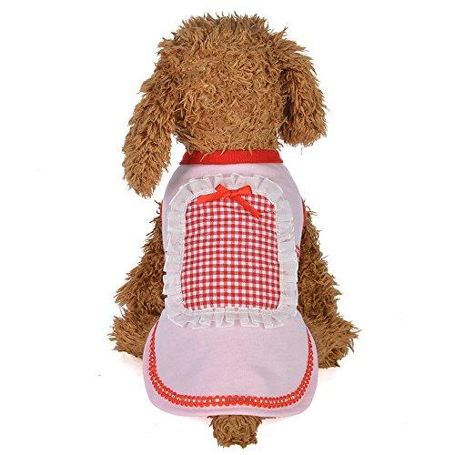 EUZeo Lovely Hundebekleidung Puppe Kragen Rock Dress Dog Kostüme Hundepullover Katzepullover Kleider für Haustiere Hund Katze Katzekleider Party Kleiner Katzen Hund Minikleider Cocktail Dressing