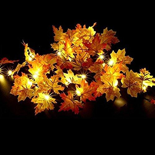 ichterkette,Goldbeing Halloween Lichterkette Herbstgirlande mit 40 Lichtern Herbst Blättergirlande 4,5M, Warmweiß,perfekte Dekoration für Herbst und Danksagung(40leds) (Spaß Halloween-handwerk Zu Hause)