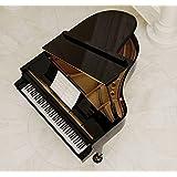 NEUF - STEINHOVEN SG227 - GRAND PIANO NOIR