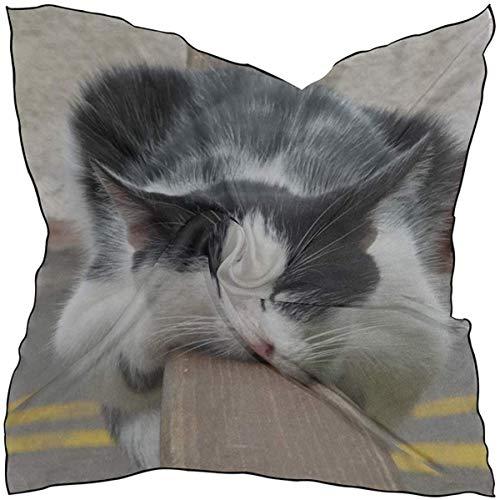 Seidenschal Quadrat Satin Schal Katze liegend schlafen niedlich entdeckt leichte Bandanas Kopf wickeln Hals Schal 24 x 24 Zoll