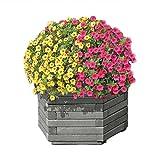 Gartenpirat Pflanzkasten 6-Eckig Ø 60x35 cm aus Holz Grau imprägniert