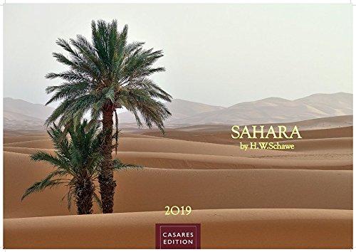 Sahara 2019 - Format S