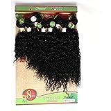 8-14 Zoll Eunice Human Hair Bundles Brasilianische Kinkys Curly Haare Brazilian Hair Bundles kinky Curly Haar 8 Bündel brasilianische menschliche Haare (8 10 12 14 zoll, schwarz(jerry curly))