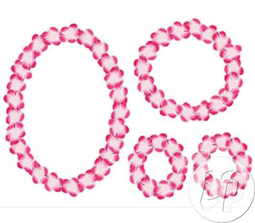 Lote-Conjunto-de-6-piezas-Conjunto-de-collar-de-Tahit-las-pulseras-y-de-color-rosa-y-corona-blanca