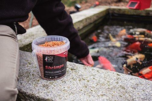 Garnelen-Koifutter (5 Liter) Schildkrötenfutter mit hohem Proteingehalt zur Förderung der Tiergesundheit - auch für Hühner verwendbar - getrocknete Shrimps - 3