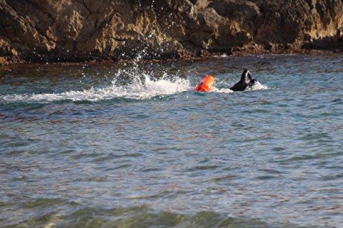 Zoom IMG-3 swim secure boa fissa per
