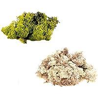inerra Finnland Moos - Packung zu 2 gemischte Farben 150g Beutel - Rentier Moos Handwerk Pflanzen Töpfe Blumen... preisvergleich bei billige-tabletten.eu