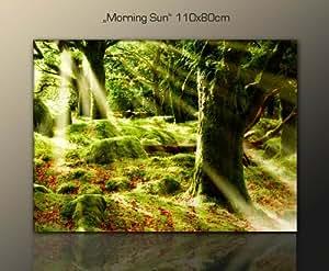 Top angebot wellness spa entspannung wandbild baumbild morning sun 110x80 wald - Amazon wandbilder ...