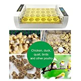 24 Egg Incubator and Hatcher for Chicken Goose Duck Birds Digital Automatic Turning