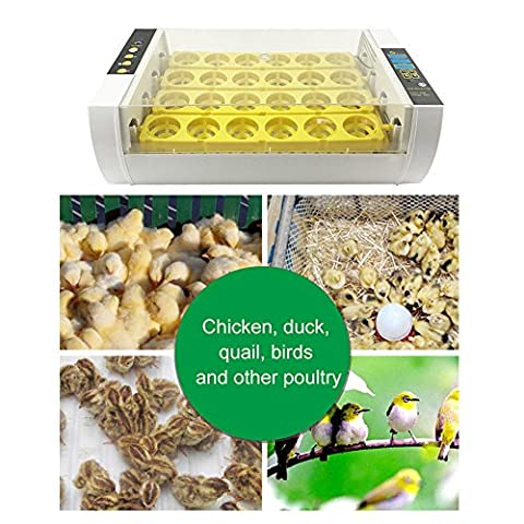 24 Egg Incubator and Hatcher for Chicken Goose Duck Birds Digital Automatic Turning Temperature