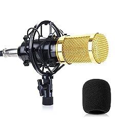Mikrofon PC SUMGOTT Kondensator Mikrofon mit 3,5 mm Klinke und Anti-Wind Schaum Cap| Für PC, Laptop, YouTube, Skype, Facetime, Vocals, Podcast