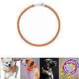 Case Wonder LED Leuchthalsband Hunde Halsband-USB Wiederaufladbar Längenverstellbarer Haustier Sicherheit Kragen/Blinkende Kragen Deluxe für Hunde und Katzen-3 Lights Mode & 8 Farben(Orange)