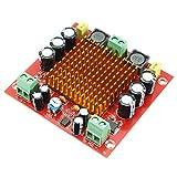 Ils - XH-M544 DC 12V 24V 150W TPA3116DA TPA3116 D2 Mono Kanal Digital Power Audio Verstärker Amp Board