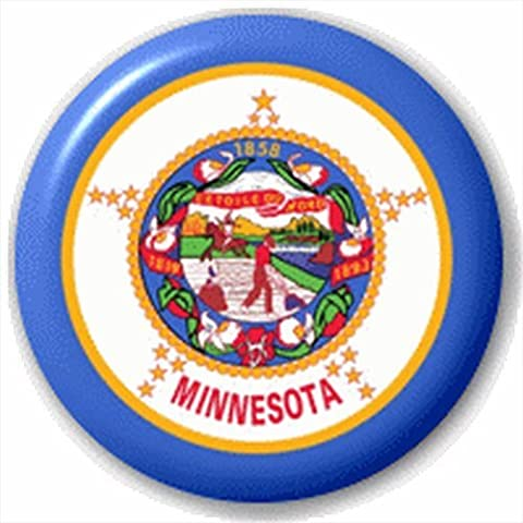 Small 25mm Lapel Pin Button Badge Novelty Minnesota