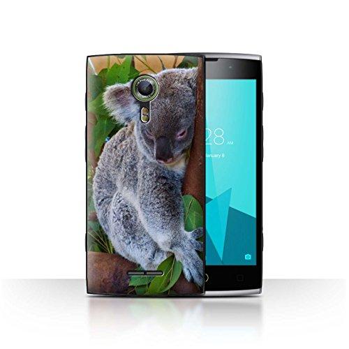 Stuff4® Hülle/Case für Alcatel Flash 2 / Koala Muster/Wilde Tiere Kollektion