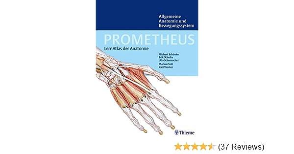 PROMETHEUS Lernatlas der Anatomie. Allgemeine Anatomie und ...