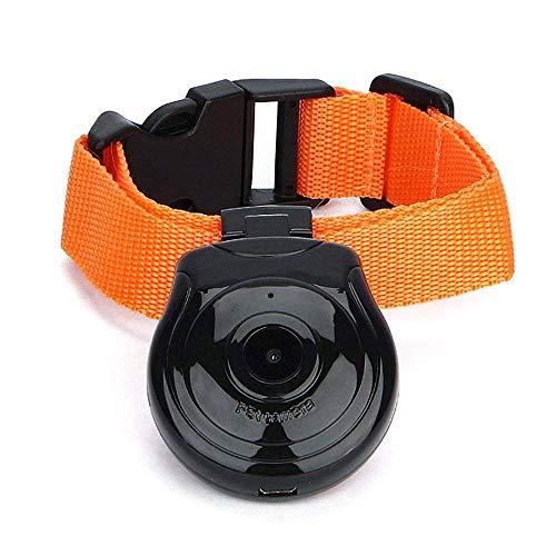 KOBWA Hundehalsband Kamera Digital Haustier Kragen Cam Kamera Mini Video Recorder Kamera DVR Video Recorder Monitor Fuer Hund Katze Welpen(Schwarz)