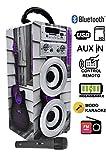 DYNASONIC Altavoz Karaoke Bluetooth 10W, Reproductor mp3 inalámbrico Portátil, Lector USB SD, Radio FM - Modelo 3
