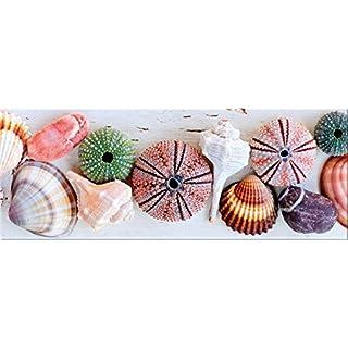 artissimo, Glasbild, 80x30cm, AG1915A, Shell, Muscheln, Strand und Meer, Bild aus Glas, Moderne Wanddekoration aus Glas, Wandbild Wohnzimmer modern