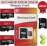 Blue Wave SD Karte,  256 GB