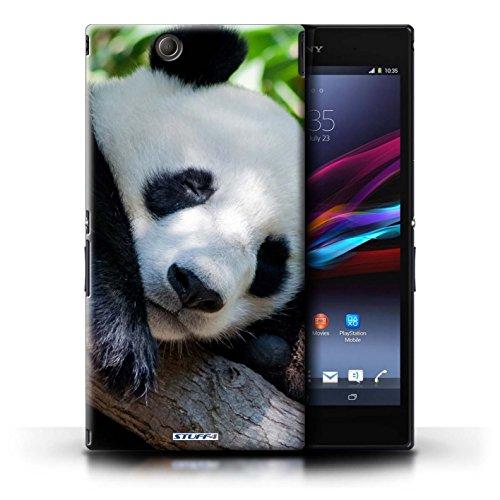 KOBALT® Hülle Case für Sony Xperia Z Ultra | Löwe Entwurf | Wilde Tiere Kollektion Bär
