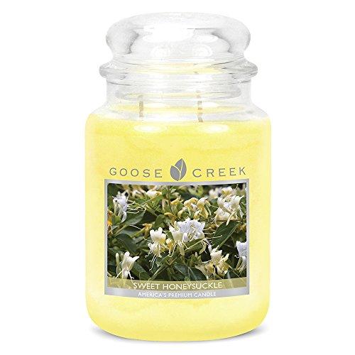 Goose Creek Kerzen-Glas 24 Unzen - Sweet Honeysuckle -