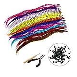 BLINNGO 35 Pcs Extension de Cheveux Capillaire en Plume synthétiques(40cm) +100 Perles,1 Pinces et 1 Crochets (Cheveux Coulers Mixtes)