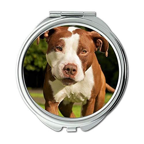 Yanteng Spiegel, Kleiner Spiegel, Shih Tzu Hund, Taschenspiegel, 1 X 2X Vergrößerung