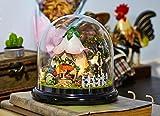 Axcone DIY-Set Miniatur-Puppenhaus mit Transparenter Kuppel holzspielzeug LED-Licht Spieluhr für Jungen und Mädchen zum Spielen Miniatur Kreativ Geburtstag Weihnachts Geschenk-Grün
