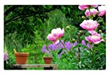 iRocket - Tappeto per Interni My Garden, 60 x 40 cm