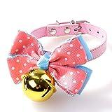 Ellaao Halsbänder für Hundehalsband, Namensschild, für Kleine und mittelgroße Hunde