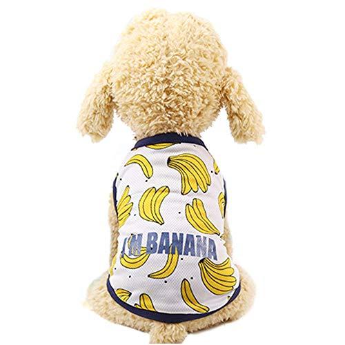 AUOKER Haustierkleidung für Paare, weich, atmungsaktiv, bequemes Hunde-Shirt, Kleid, Obst-Design, Haustier-Kostüm für Hunde, Welpen, Hunde und Katzen (Kostüm Mustern Und Designs)